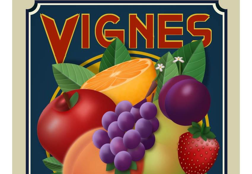 Example of Vignes