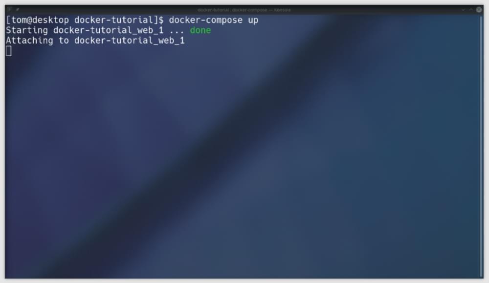 docker-compose up output
