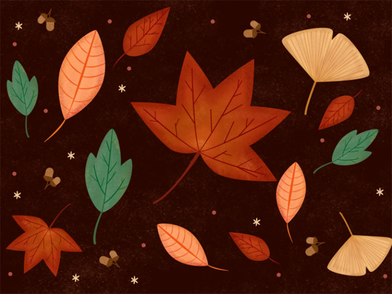 Autumn-Leaves Beautiful autumn illustration examples for the season