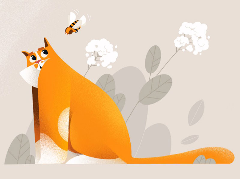 Summer-cat Beautiful cat illustration examples to check out