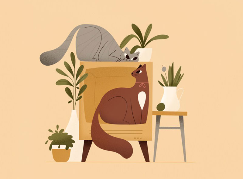 Two-cats Beautiful cat illustration examples to check out