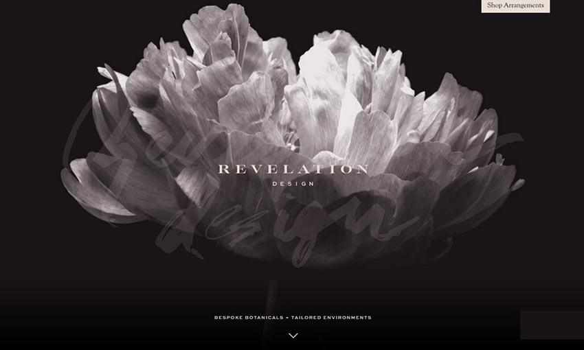 Screen capture from Revelation Design