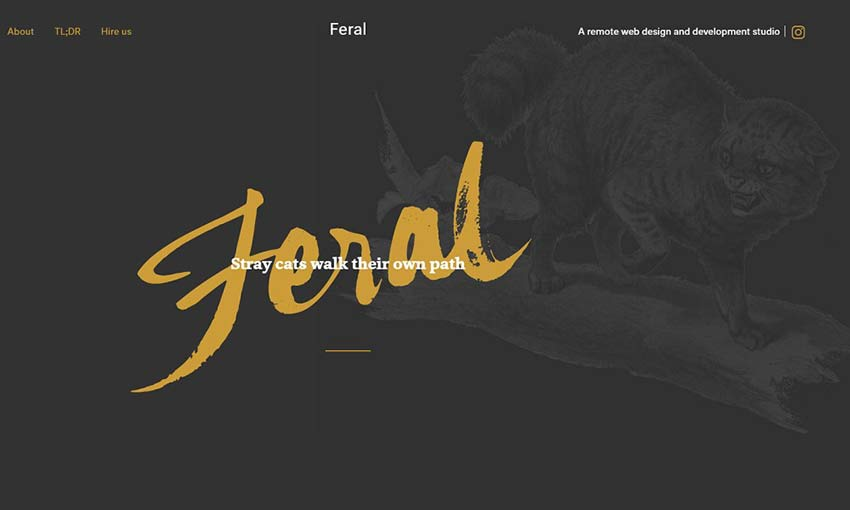 Image from Feral
