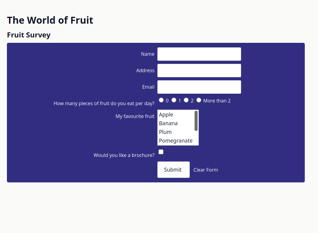 The initially loaded form