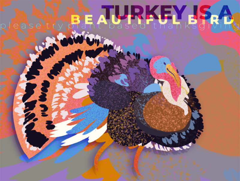 turkey-is-a-beautiful-bird Thanksgiving illustration examples that are great