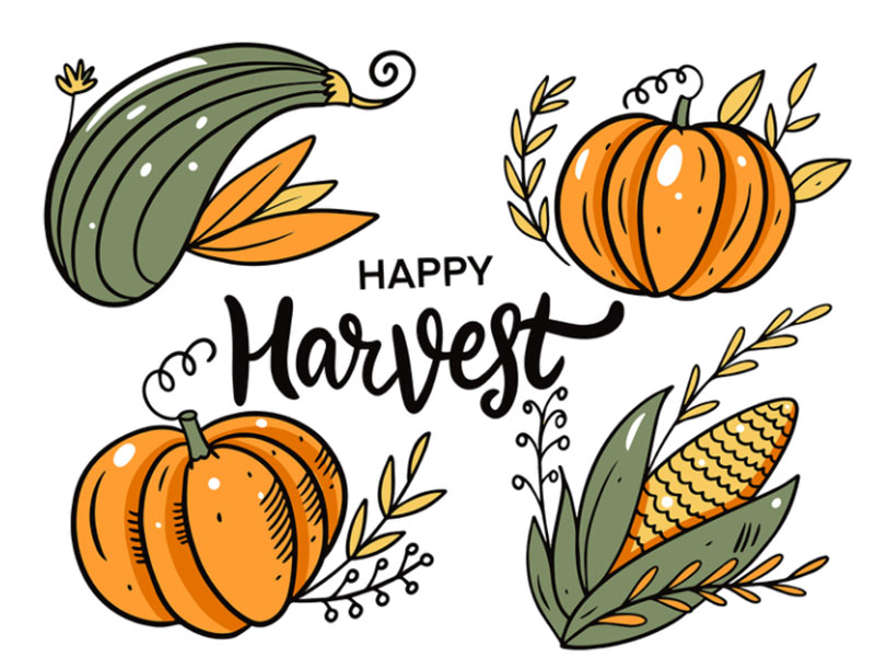 Thanksgiving-and-Harvest-holiday Thanksgiving illustration examples that are great