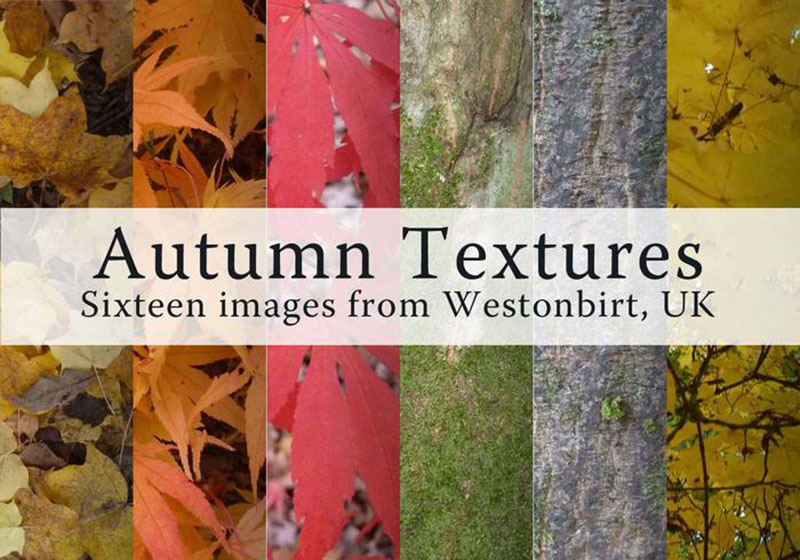 16-Cold-Fall-Leaves-Textures-All-kinds-of-trees Fall background images to use in your projects