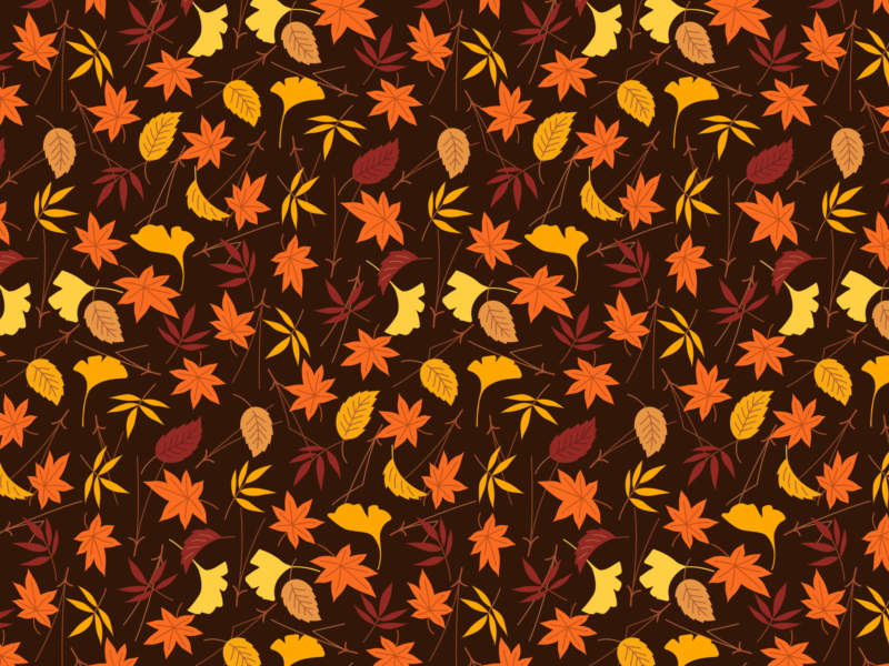 at30-800x600 Free autumn background images to use in designs this fall