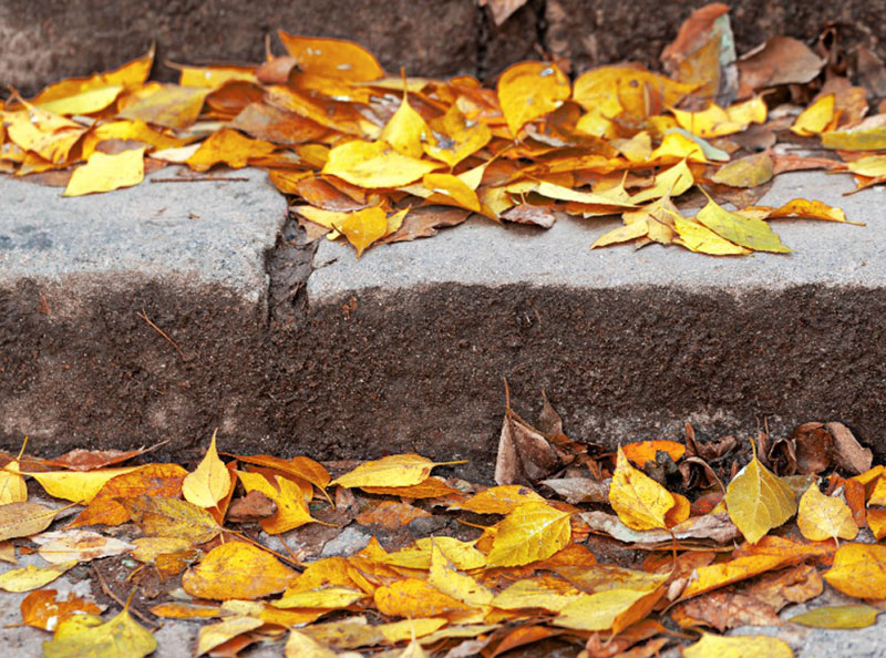 Stairs-With-Autumn-Leaves-Stock-Photo-Peaceful-environment Free autumn background images to use in designs this fall