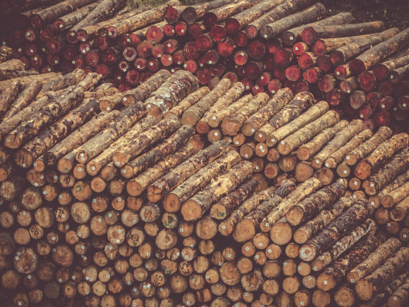 w29-800x600 Free wooden background images and textures for design projects