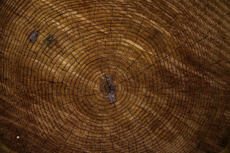 w30-800x533 Free wooden background images and textures for design projects
