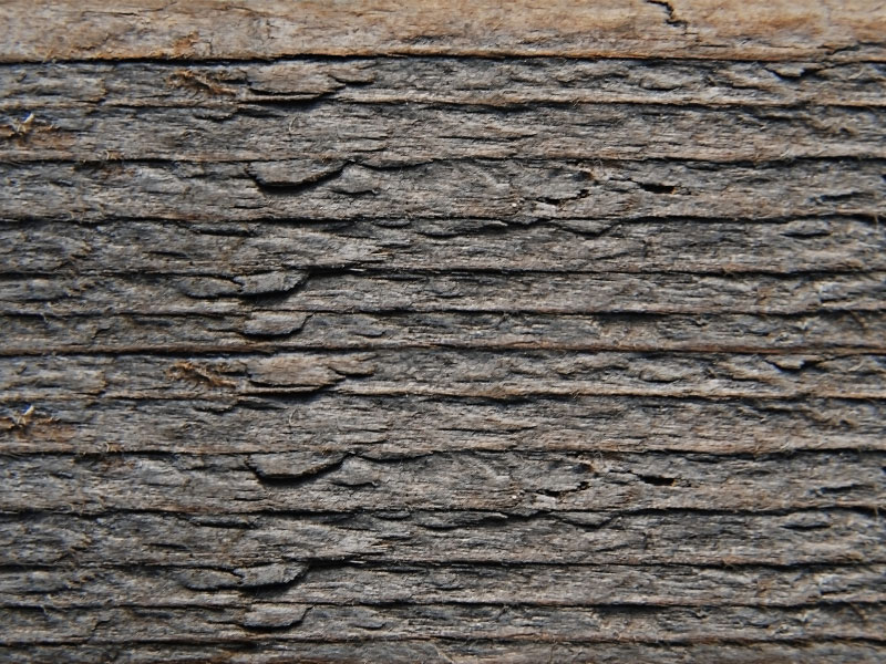 Weathered-Barn-Wood-Texture-Free-Beautiful-gradients Free wooden background images and textures for design projects