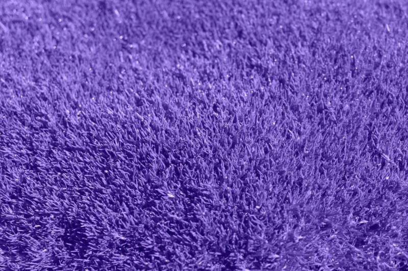 p28-800x533 Purple background images and textures you can use in your work