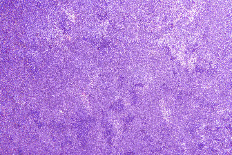 Frost-on-Glass-Close-Up-Texture-Colorized-Violet-A-frozen-image Purple background images and textures you can use in your work